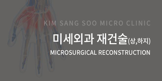 미세외과 재건술(상,하지)